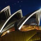 Sydney Oper bei Nacht