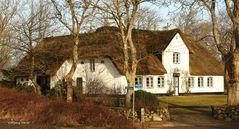 Sylt - Altes Friesenhaus in Keitum