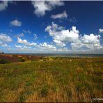 Sylt Braderuper Heide