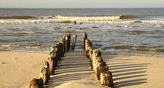 Sylt-Buhnen am Strand von Westerland