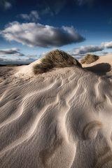 SYLT - Dunes