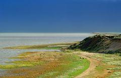 Sylt Kliff bei Morsum - Blick auf...