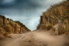 SYLT - Wenn der Wind den Sand über die Dünen fegt