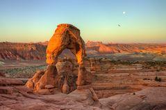 Symbol of Utah...