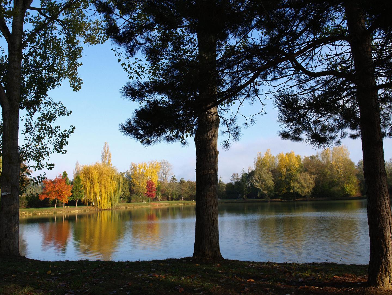 Symphonie de couleurs d'automne sur le lac de Mauvezin - Gers