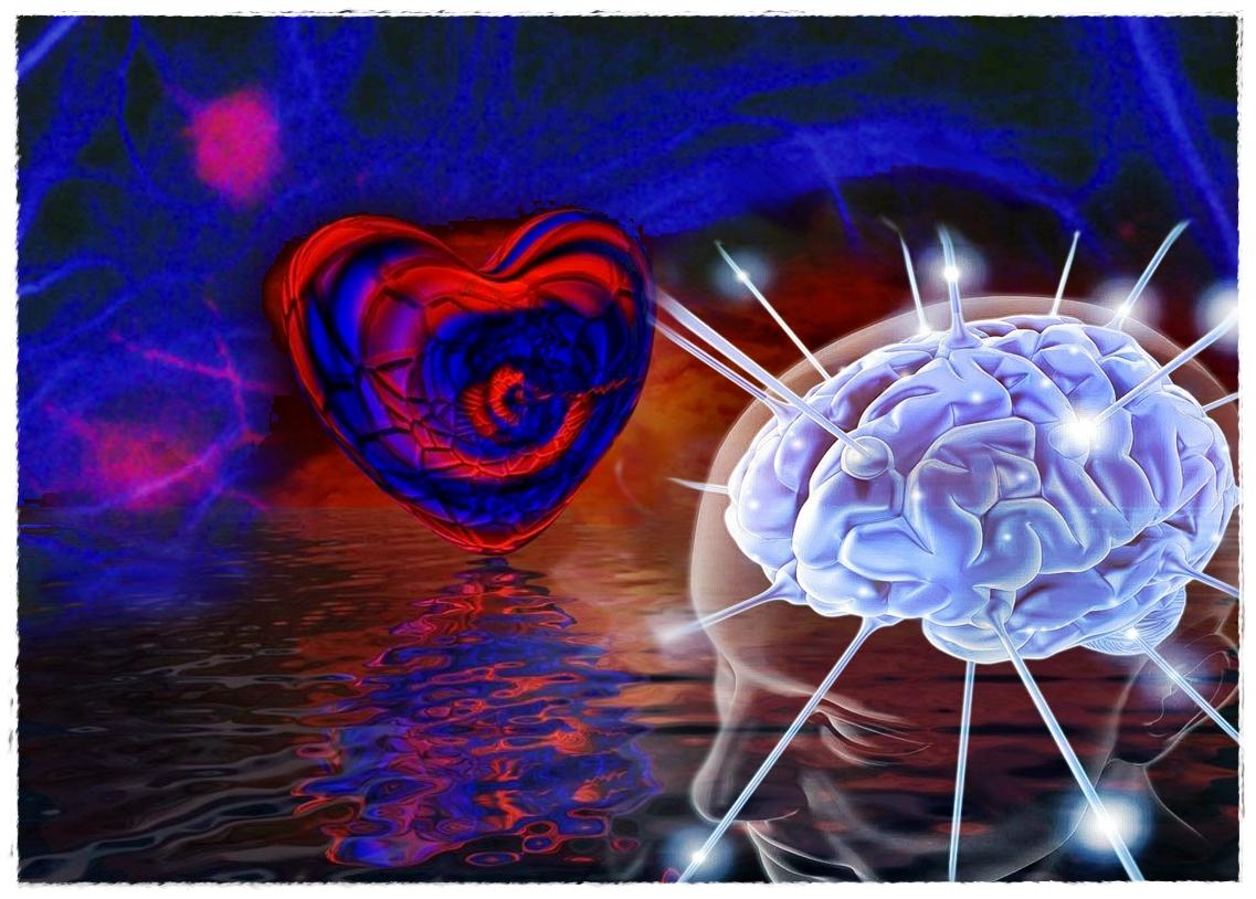 Synapsenkoller......