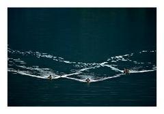 Synchronschwimmen
