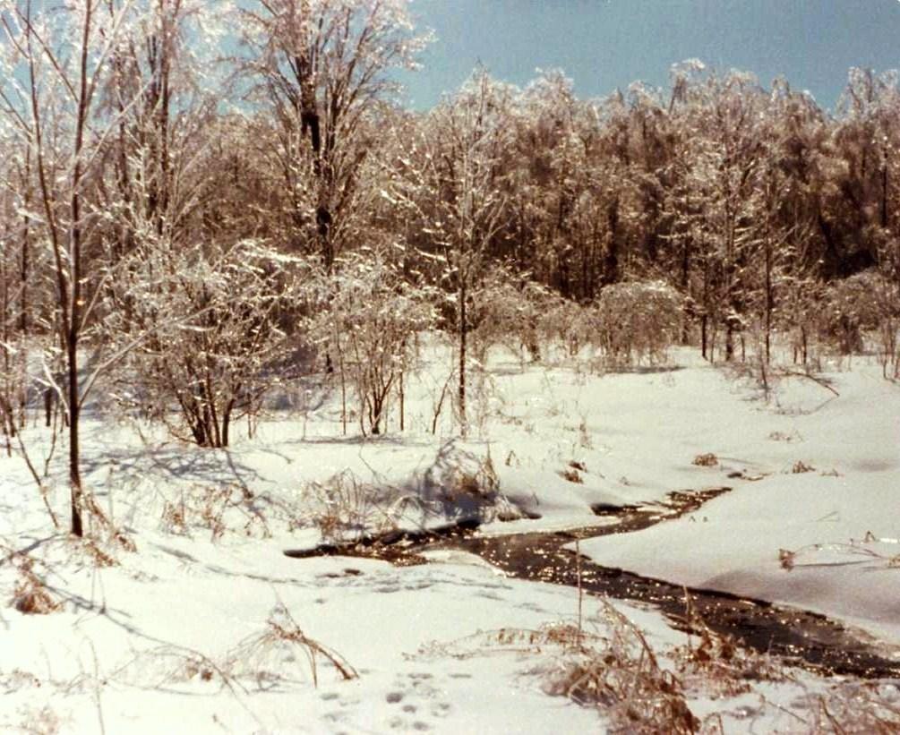 Syracuse in January