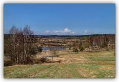 Syrauer Heide am 27.03.2011