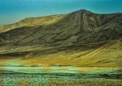 Syrien,am Rande der Wüste.. ...120_4057
