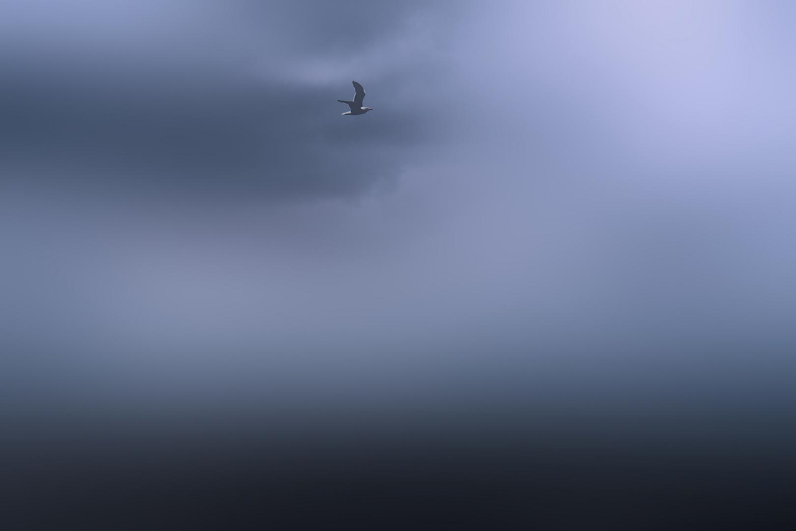 Szene über dem Meer