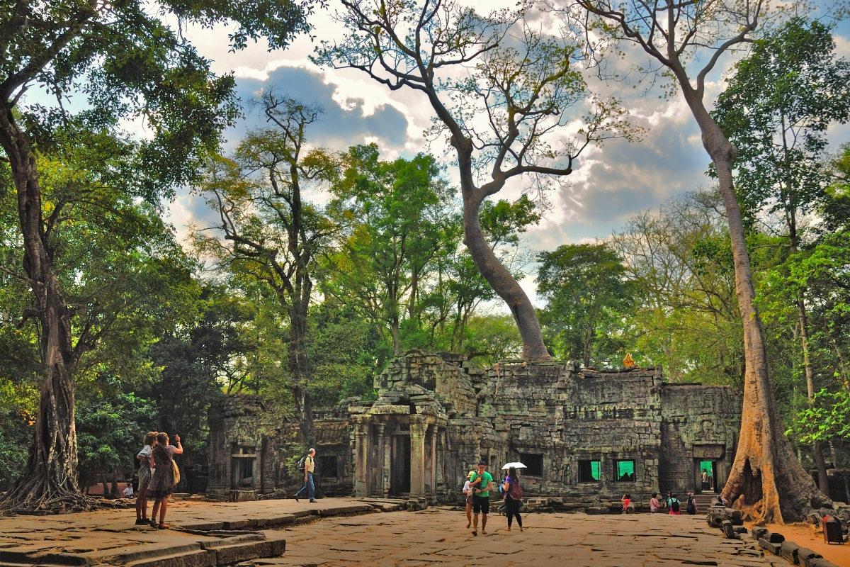 Ta Prohm the temple of the Strangler Figs