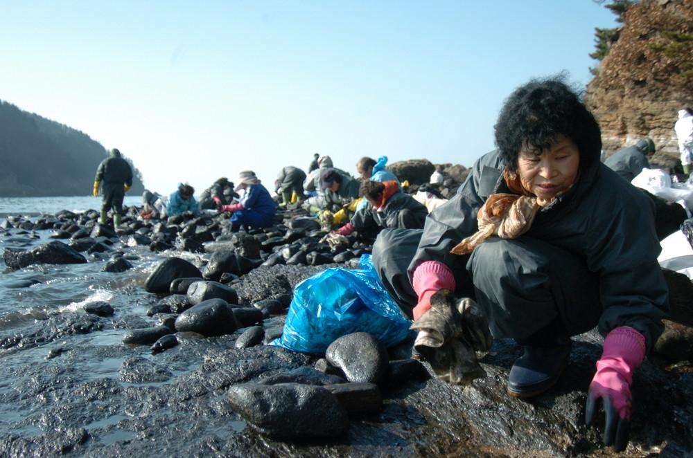 Taean Oil Spill