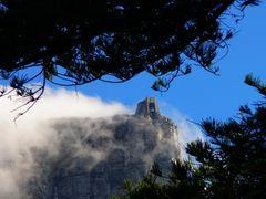 Tafelberg Capetown Bergstation
