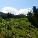 Tag 9: Über den Brünigpass ( ca. 1000m)