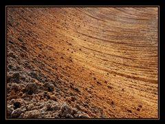 Tagebau Hambach 4