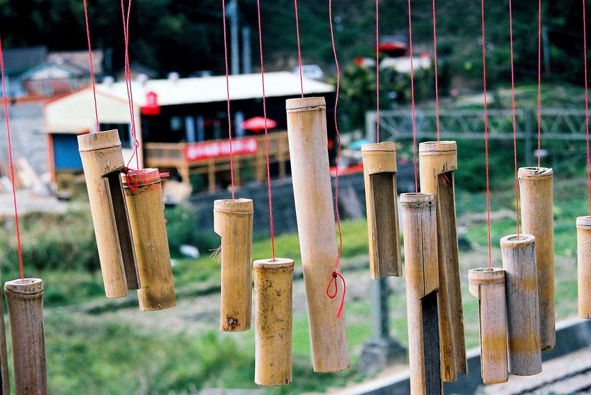 TAIWAN: Bamboo