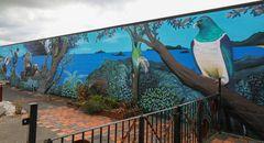 Takaka Wall Painting