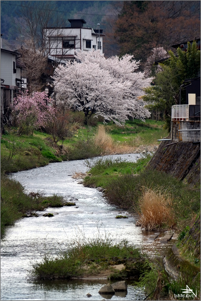 Takayama I