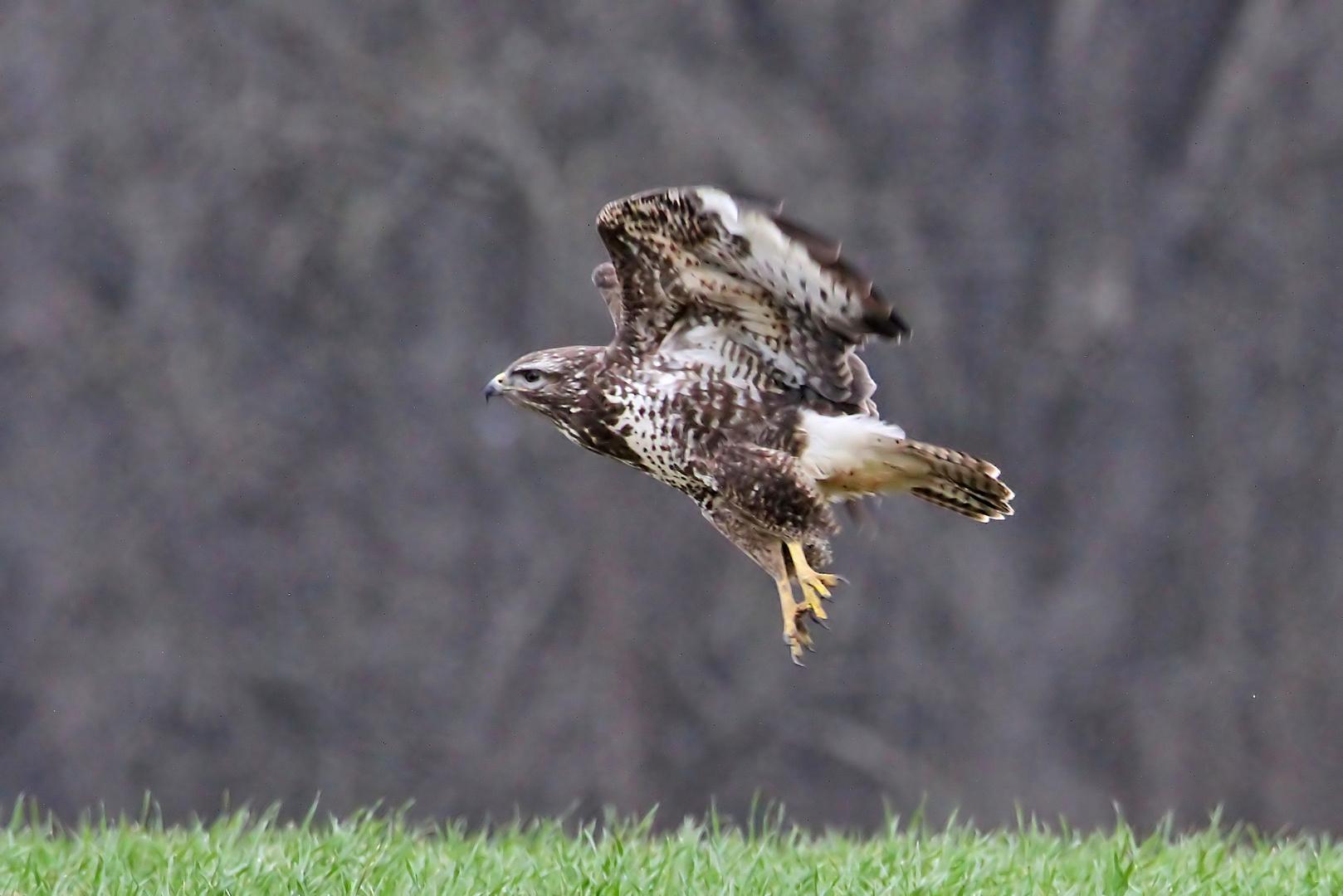Take-off ...