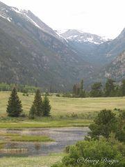 Tal von sheep lakes zum Fall River Pass 4-6-12