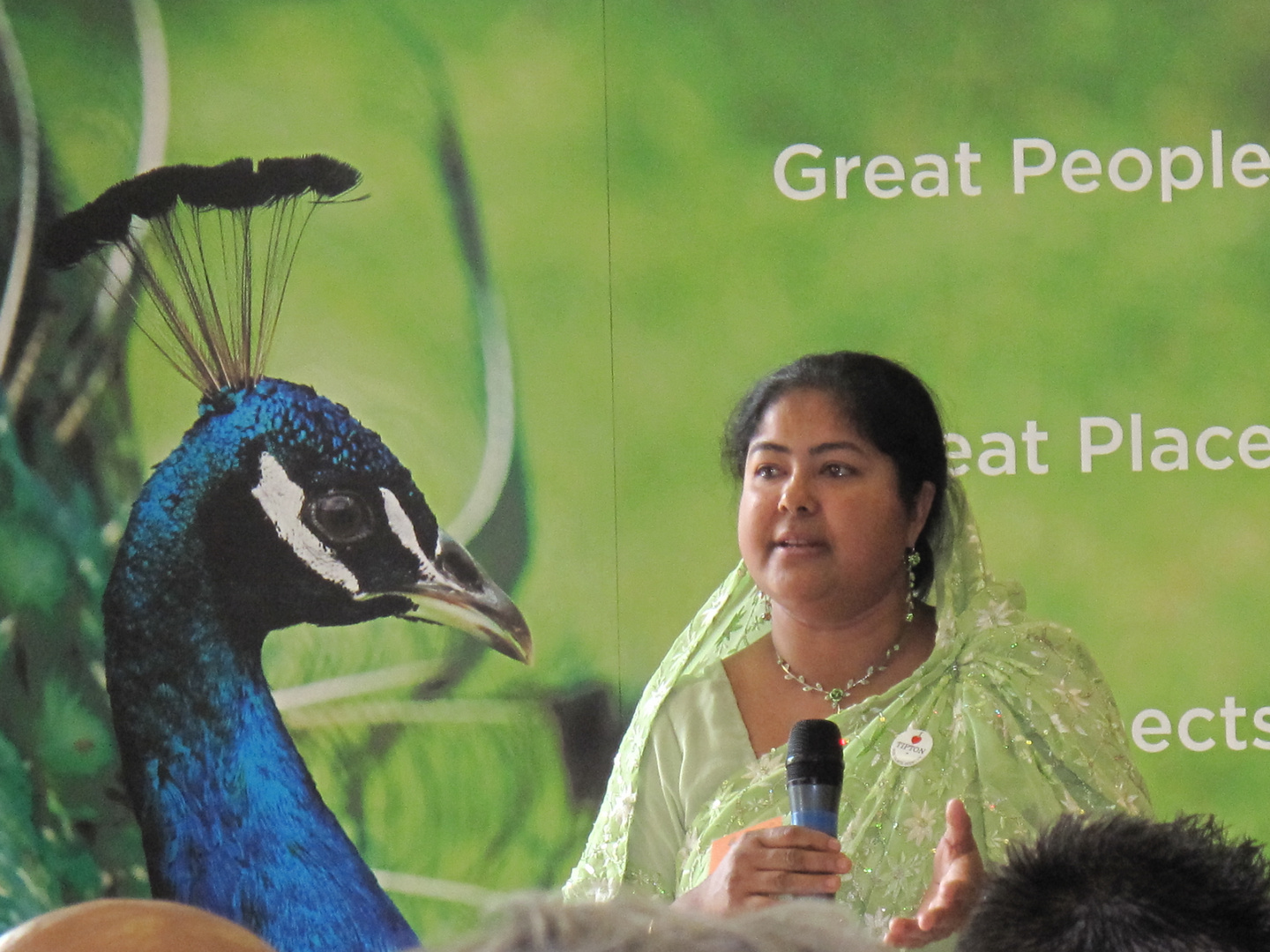 Talking to a peacock