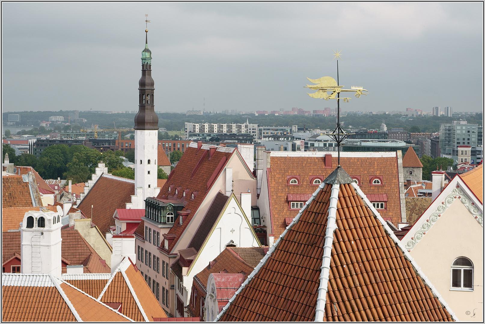 Tallinn Panorama...