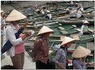 Tam Coc (Vietnam)