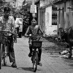 Tamil Nadu - 10 -