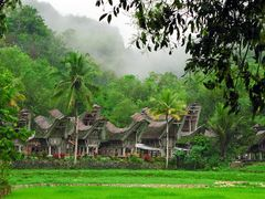 Tanah Toraja Dorf- Sulawesi