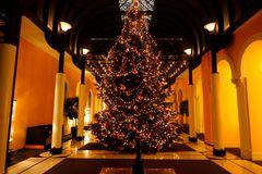Tannenbaum im Grand Hotel ***** Victoria-Jungfrau