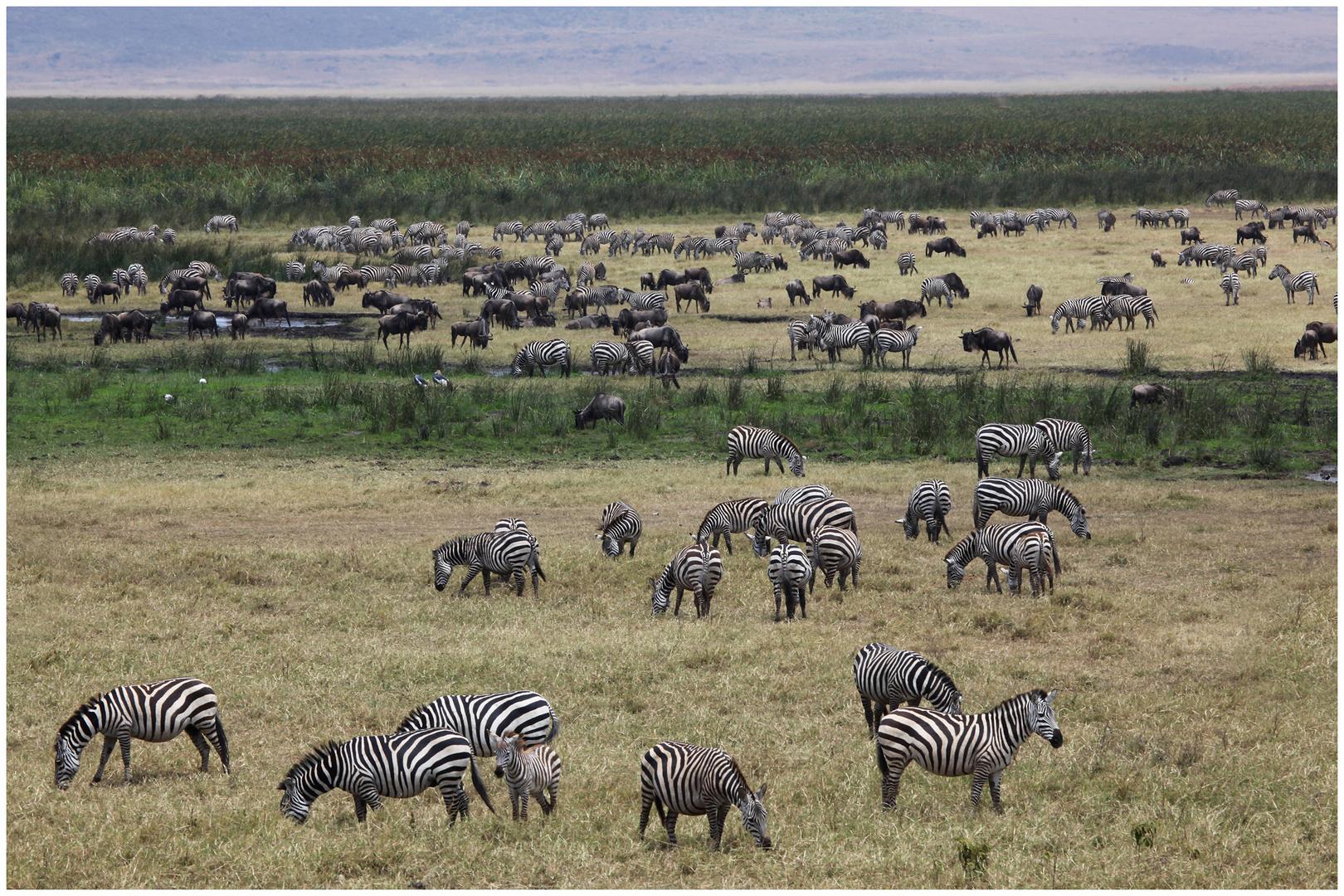 Tansania 2013