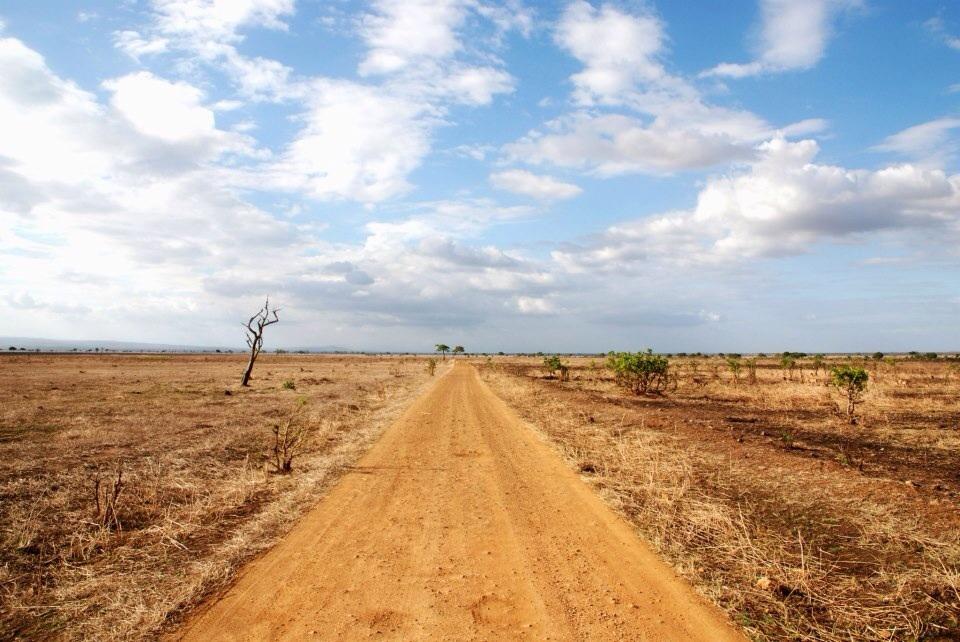 Tansania, Mikumi Nationalpark