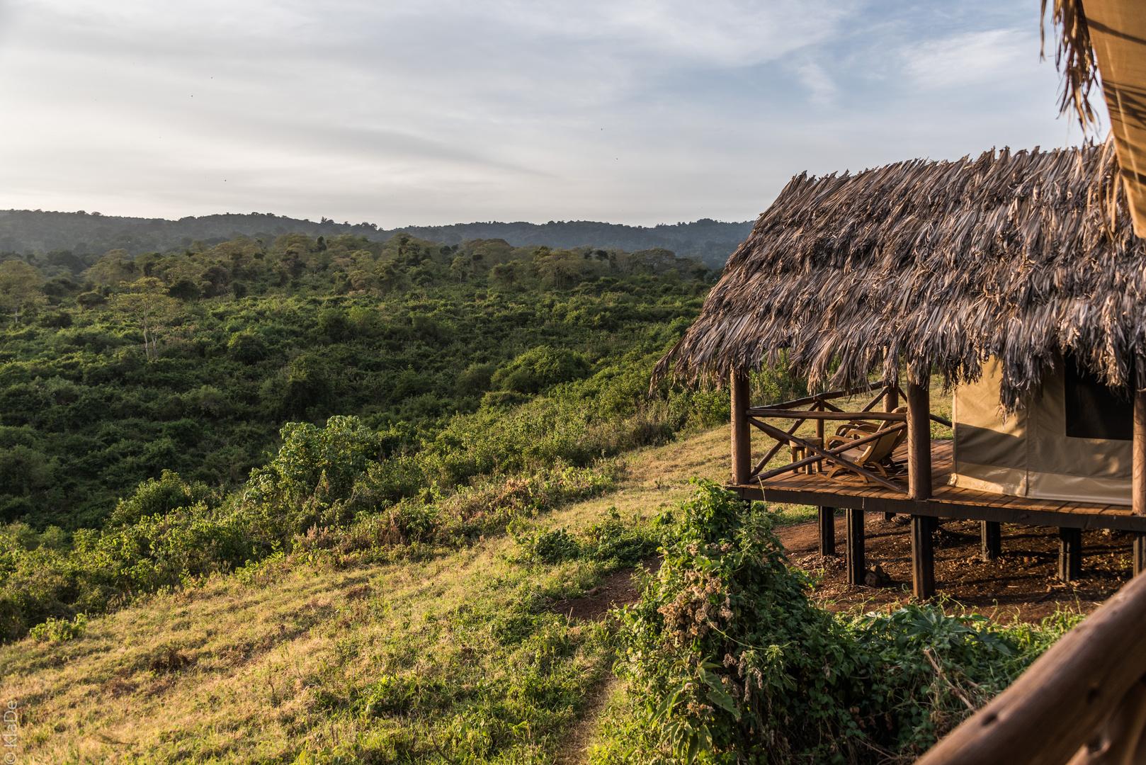 Tansania - Ngorongoro - Karibuni Crater Forest Camp - Blick von unserem Zelt