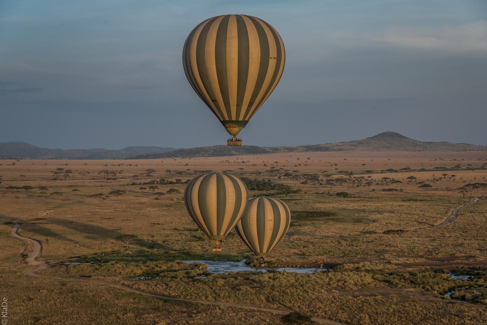 Tansania - Serengeti - Perspektivenwechsel - Kampf der Ballone am Hippo-Pool