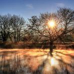 Tanz der Sonnenstrahlen/ noch ein Stern