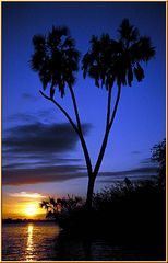 Tanzania 2001 - Abends auf dem Lake Rufiji im Selous Game Reserve