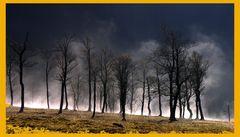 Tanzende Nebel im großen Ahornboden