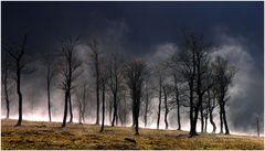 Tanzende Nebel im großen Ahornboden II