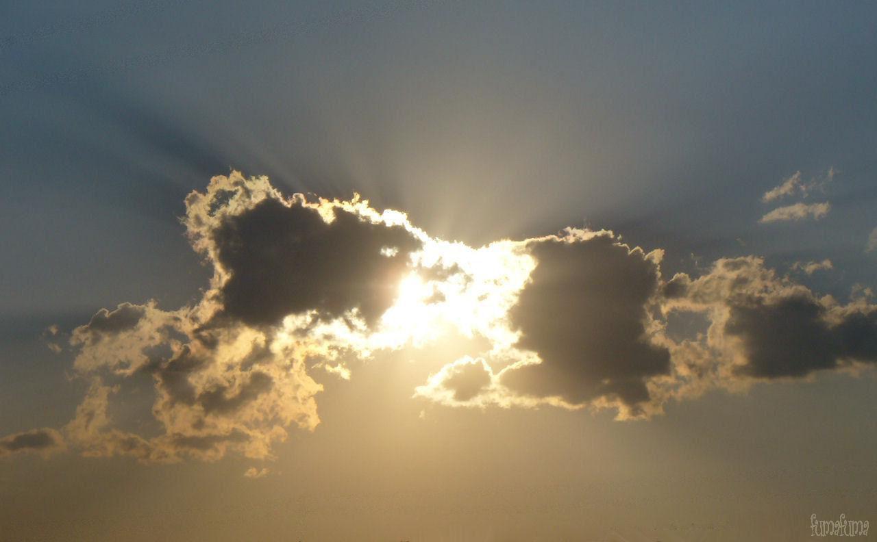 tapando al sol