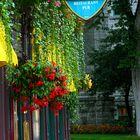 ... Tarde de lluvia en Quebec City ...