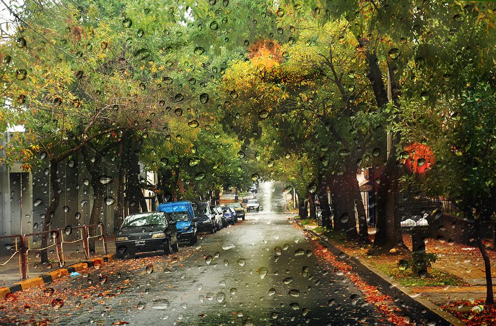 Tarde lluviosa y otoñal en Paraná