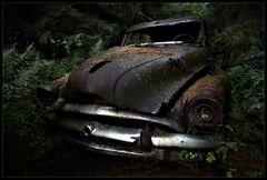 Tarzan's Limousine - im Tal der toten Autos
