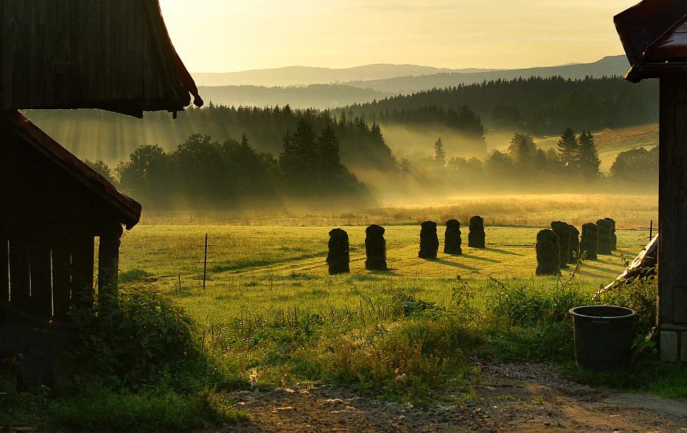 Tatra morning III
