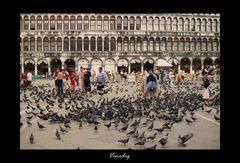 Tauben & Menschen