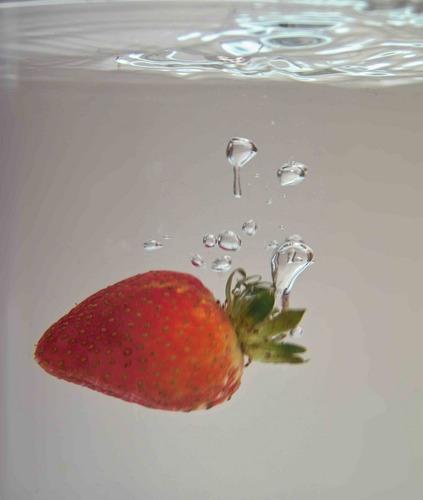 Tauch-Erdbeere