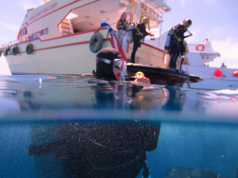 Taucher über und unter Wasser