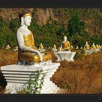 Tausend Buddhas in Reih und Glied