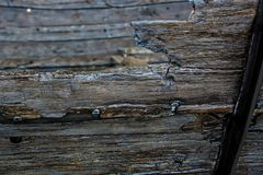 Tausend Jahre altes Holz
