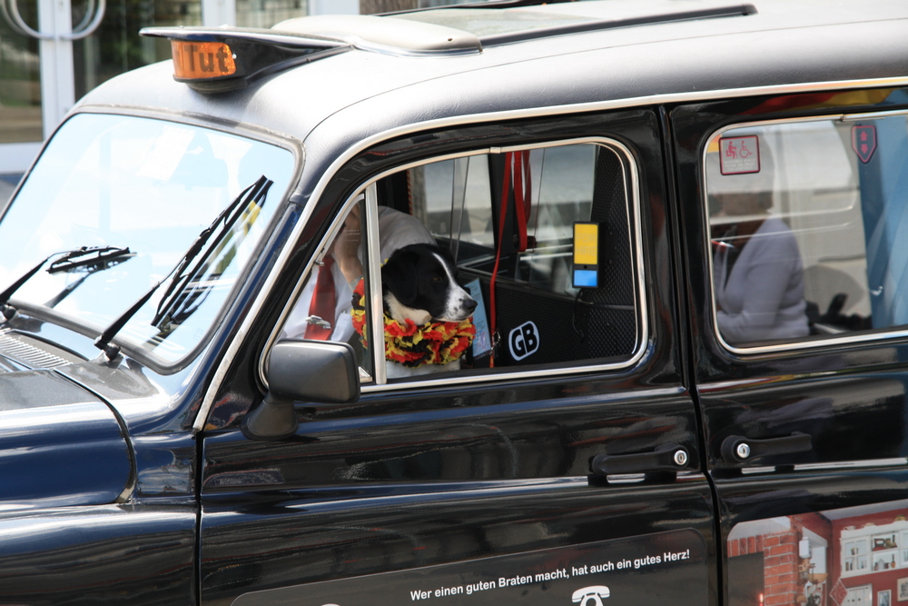 taxi gefällig ?